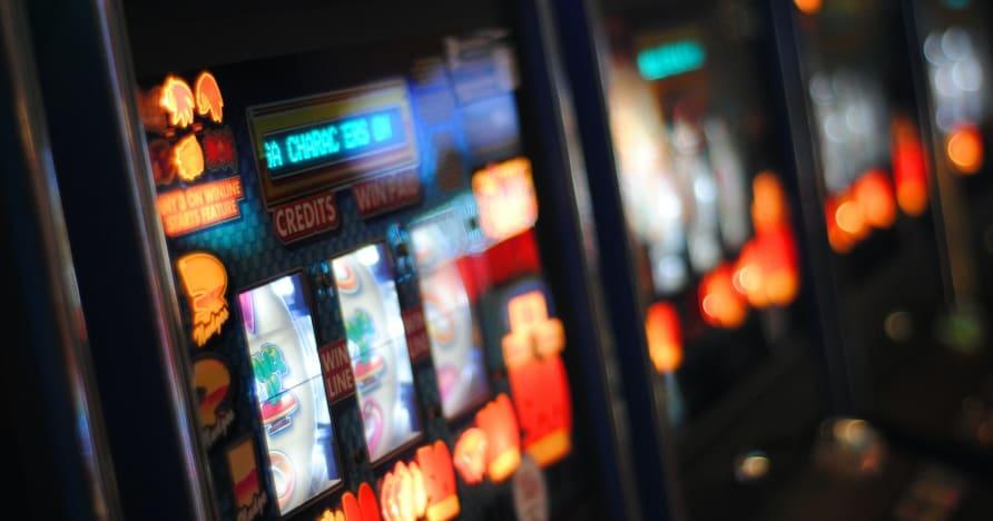 Play'n GO Roar vuoteen 2021 upeilla kolikkopeleillä